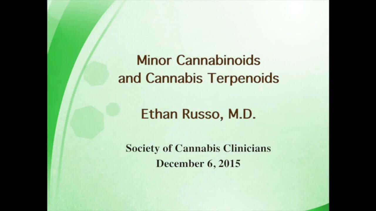 Minor Cannabinoids and Cannabis Terpenoids