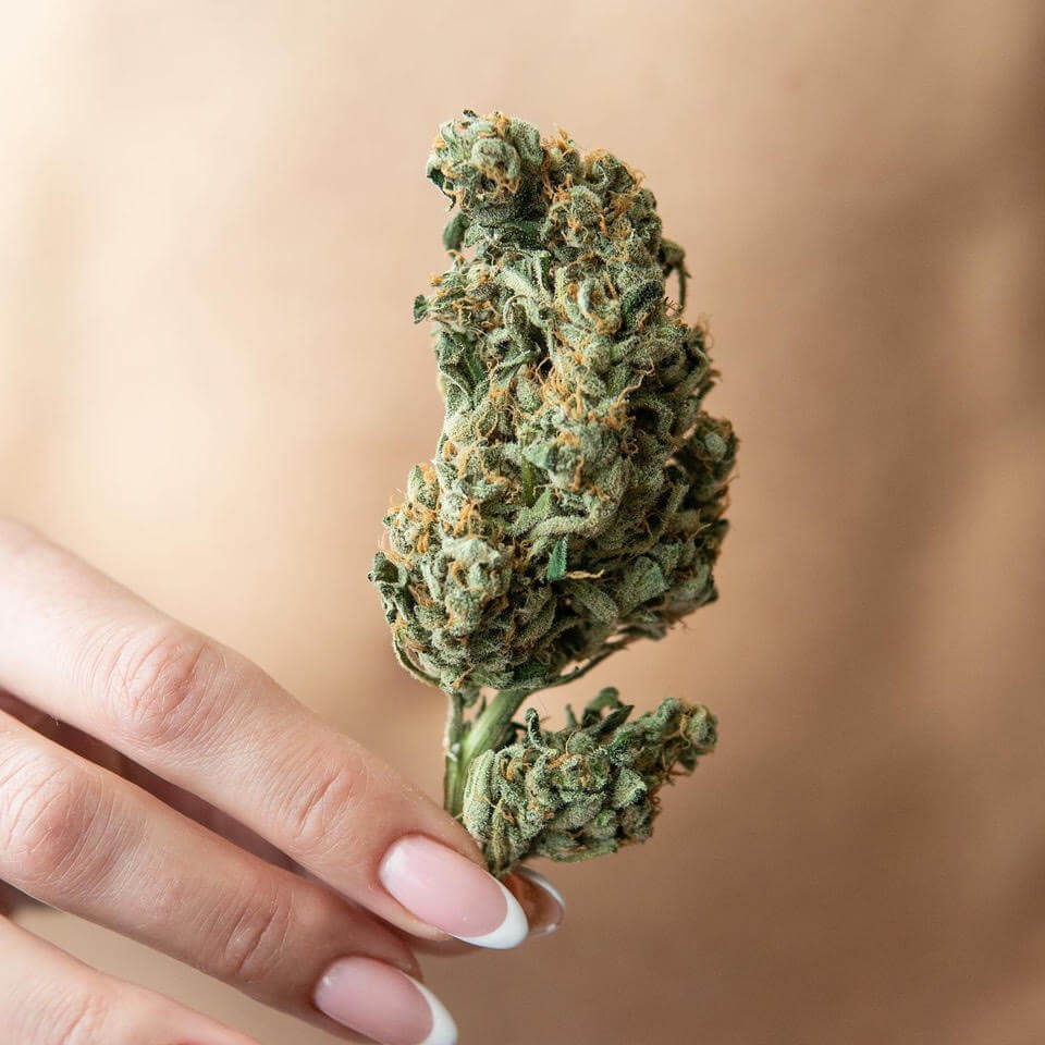 NICM Cannabis for Endometriosis Survey
